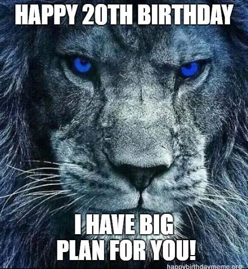 20th birthday meme lion