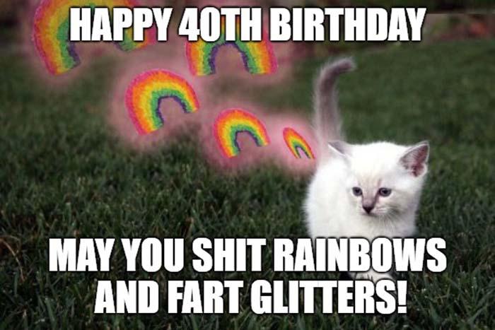 40th birthday meme cat fart