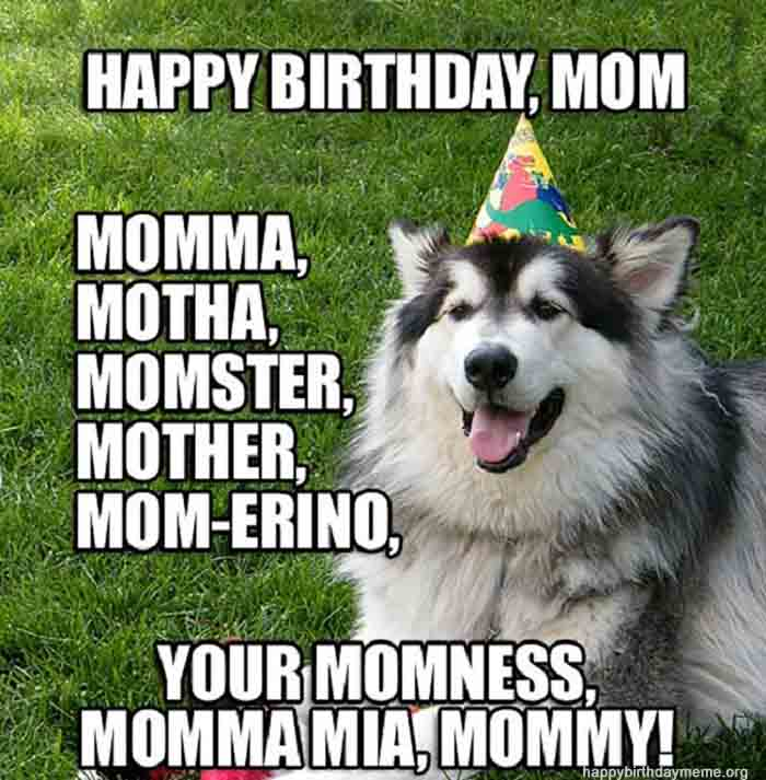 Dog meme birthday for mom