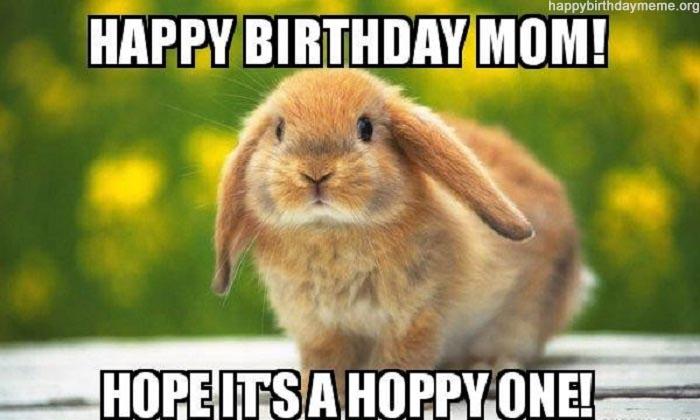 Rabbit birthday for mom