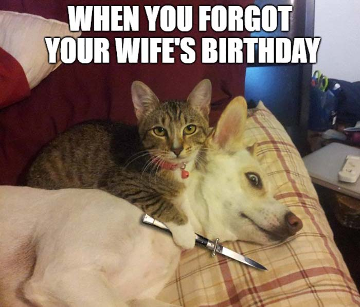 When you forgot your wife birthday
