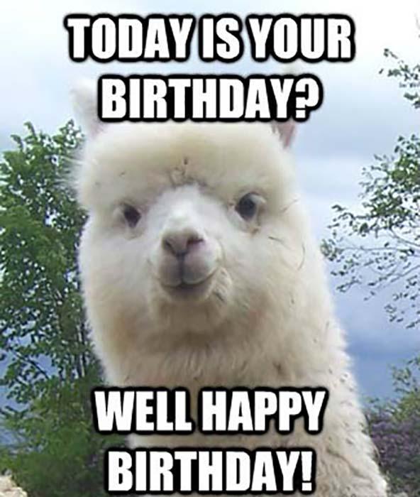 Amazing Star Wars Birthday Meme happy birthday pun memes