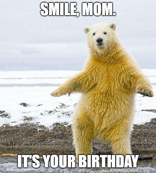 bear meme birthday mom