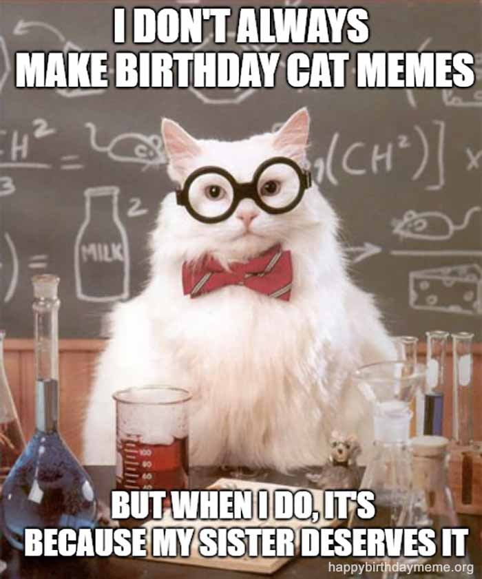 cat birthday meme for sister