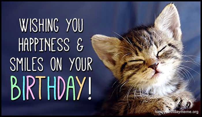 cute happy bithday cat meme