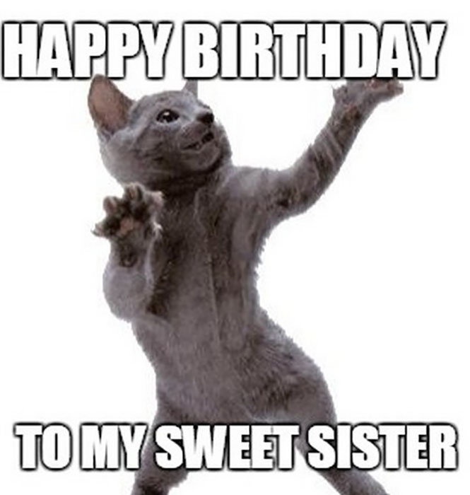 dancing_cat_birthday_memes_for_sister