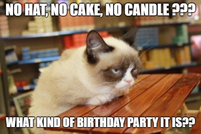 funny birthday cake cat meme