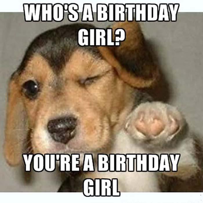 funny birthday girl dog meme