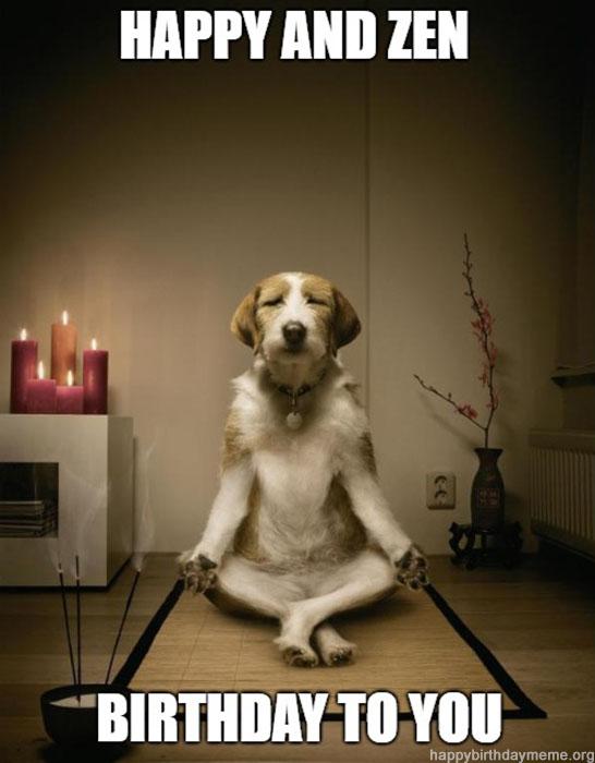 funny happy and zen birthday dog meme