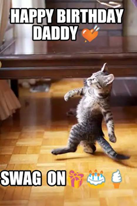 funny happy birthday dad cat meme