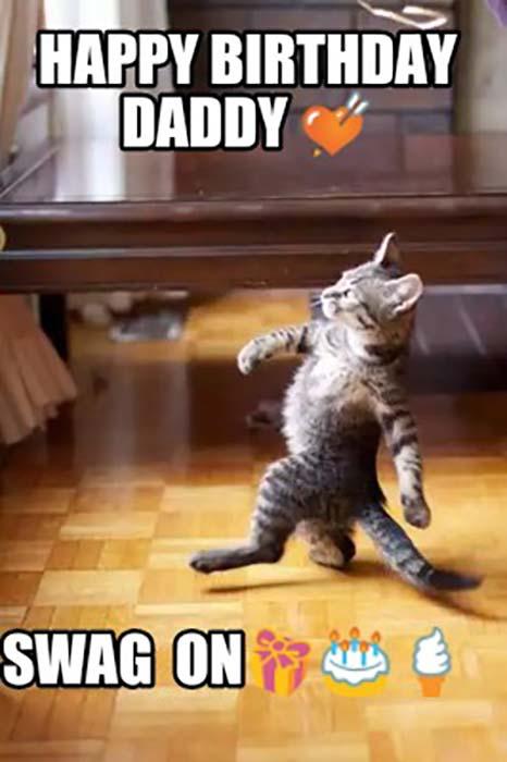 funny happy birthday dad cat meme
