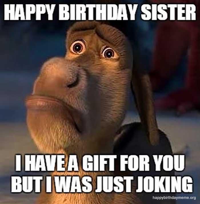 funny-happy-birthday-sister-meme-sad-donkey-birthday-memes-for-sister1