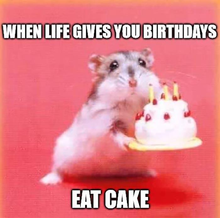 funny memes birthday cake