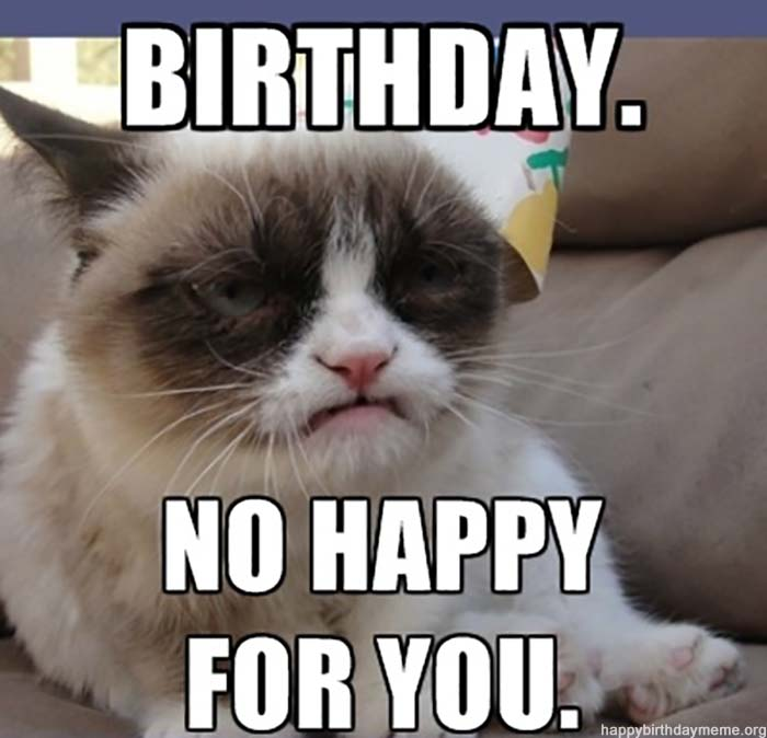 grumpy Birthday meme cat