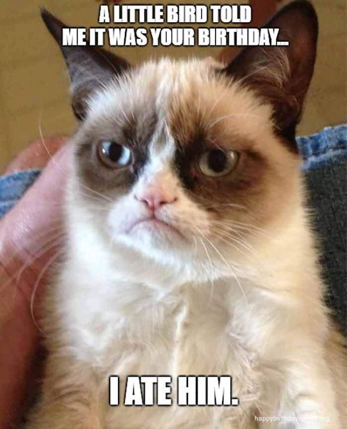 grumpy cat birthday meme for mom