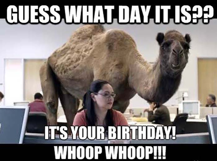 50 Funniest Happy Birthday Sister Meme - Birthday Meme