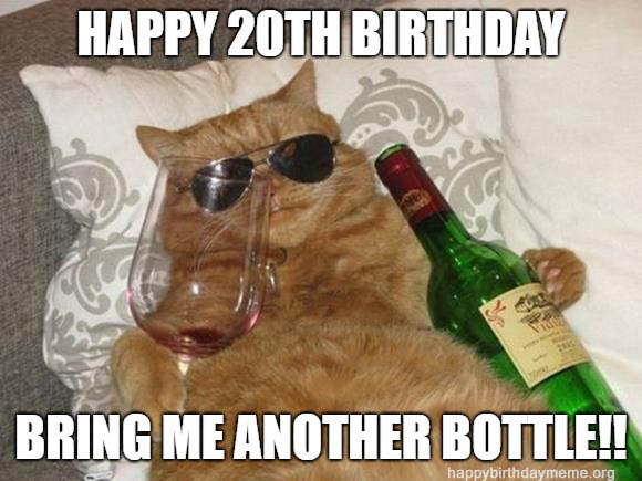 happy 20th birthday meme cat