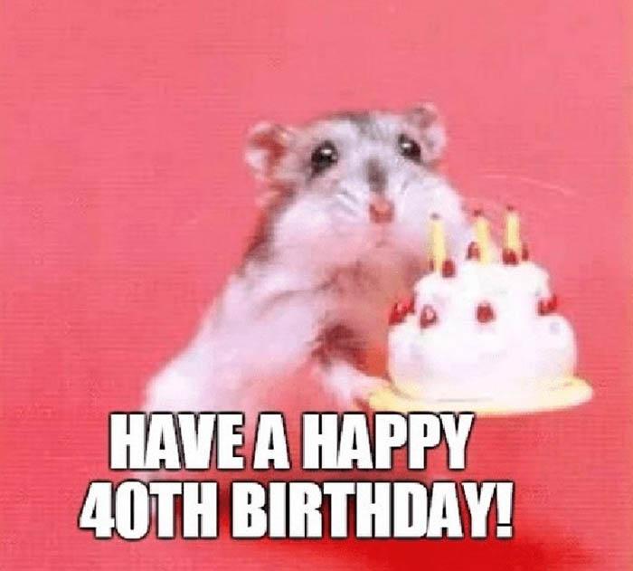 happy 40th birthday meme mouse
