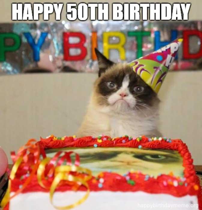 happy 50th birthday cat meme funny