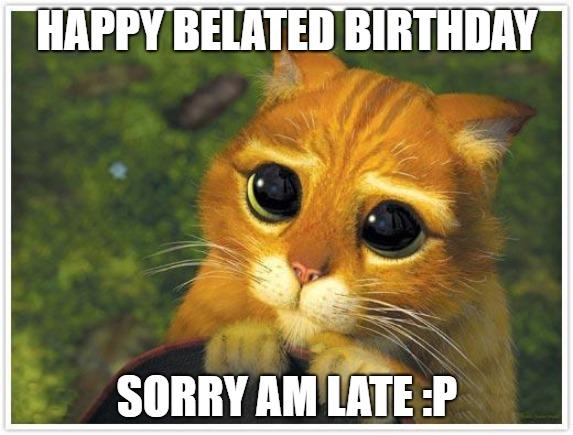 happy belated birthday images cat