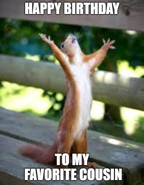 happy birthday cousin meme funny squirrel