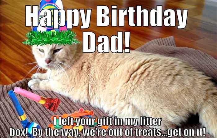 happy birthday dad cat meme