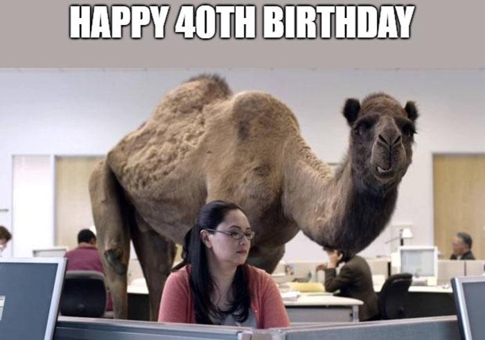 happy birthday meme 40th
