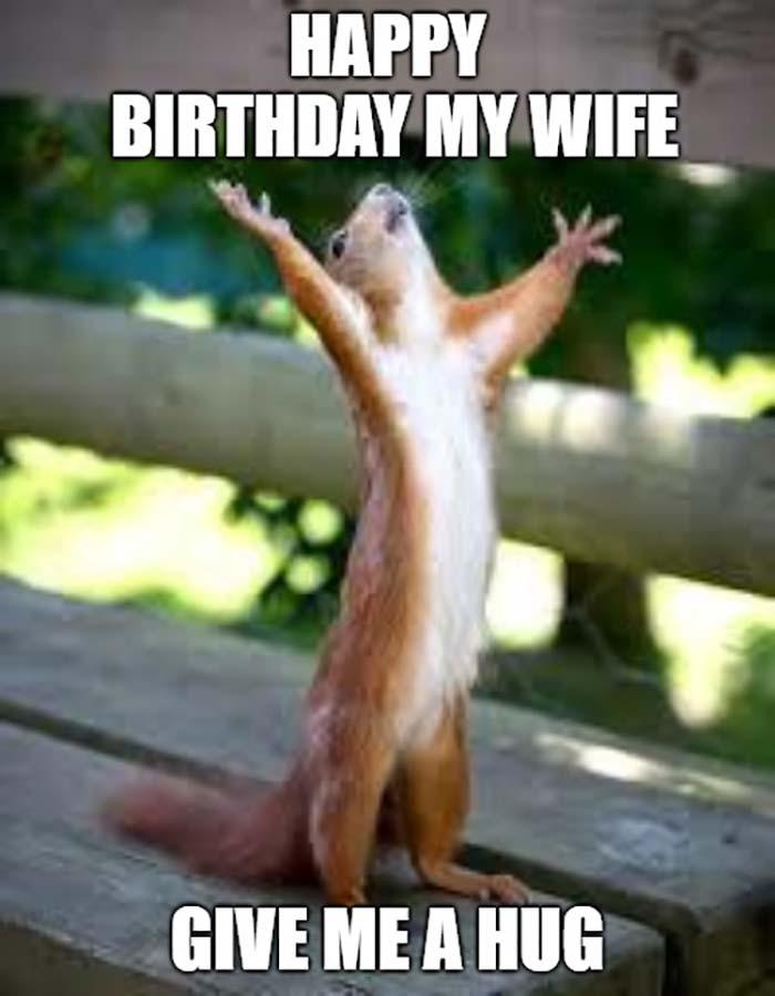 happy birthday meme for wife squirrel hug