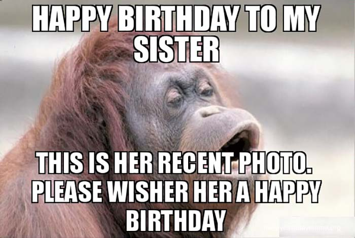 happy birthday meme sister monkey