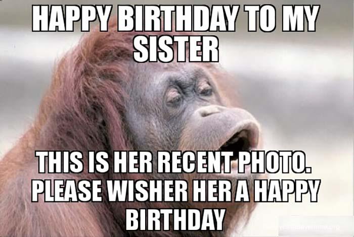 happy birthday meme sister monkey