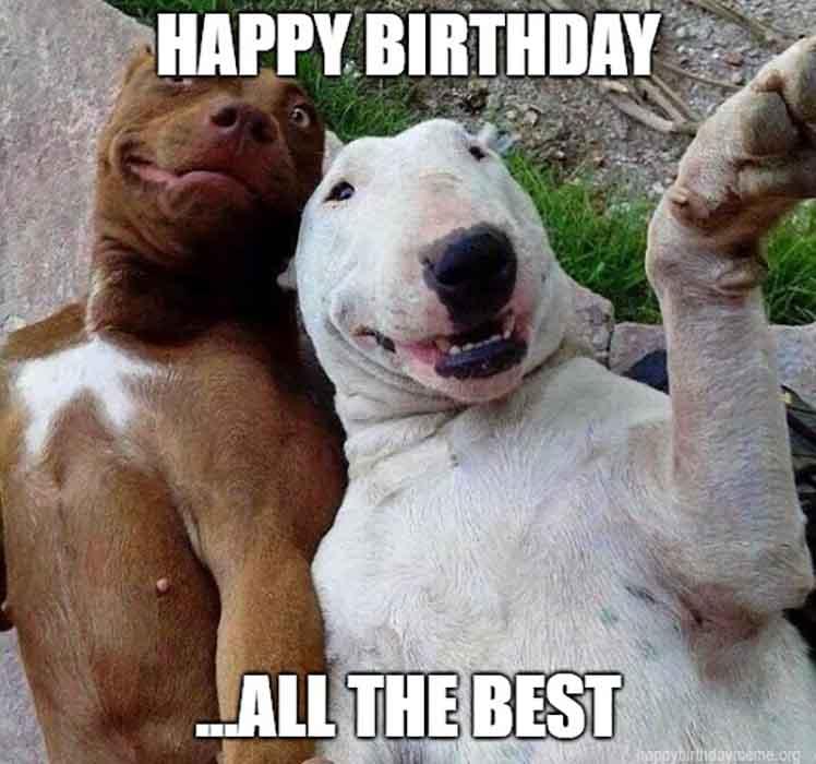 101 Funniest happy Birthday Meme - Birthday Meme