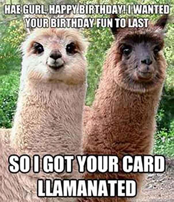 happy birthday memes for girl