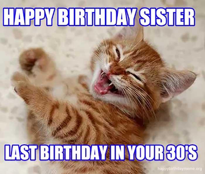 happy birthday sister cat meme