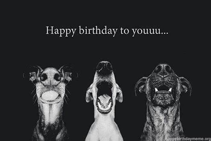 happy birthday to youuuuu