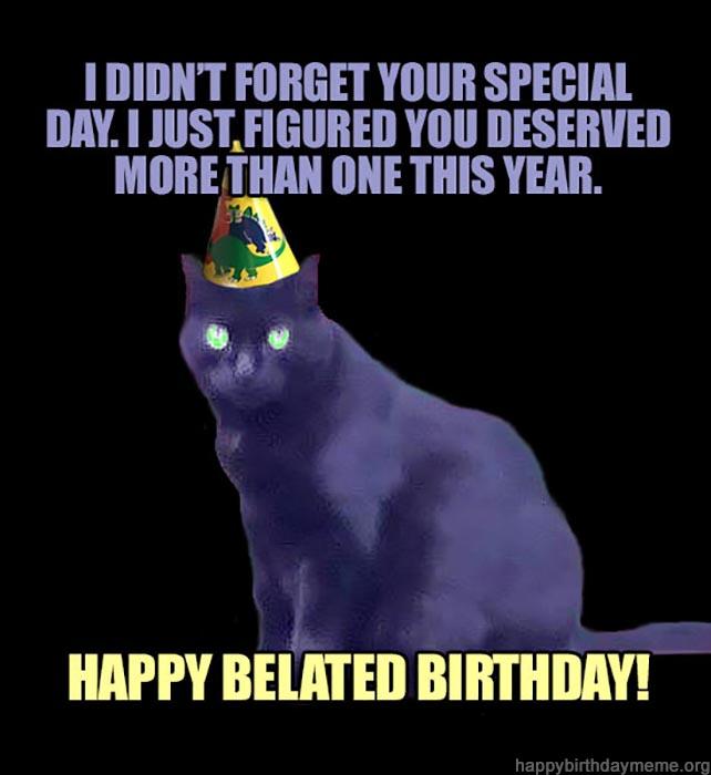 happy late birthday cat