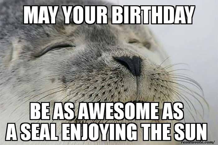 may-your-birthday-be-as-awesome-as-a-seal-enjoying-the-sun-happy-husband-meme