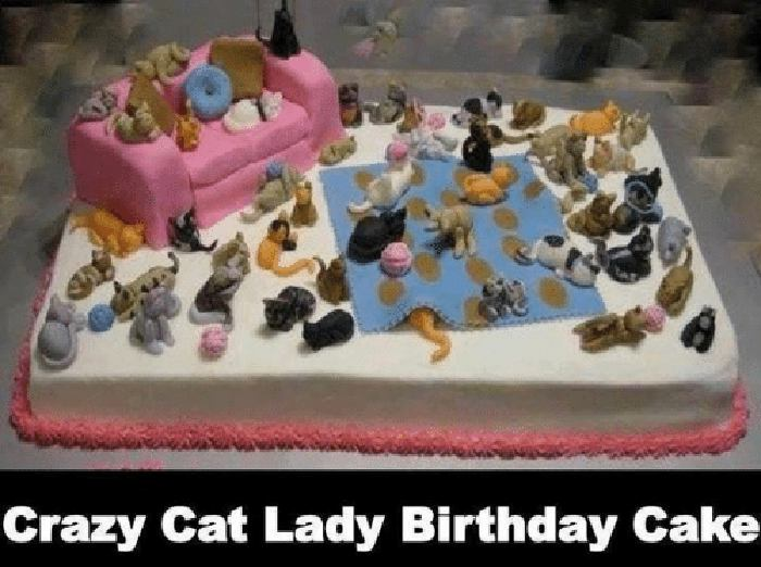 memes birthday crazy cat lady