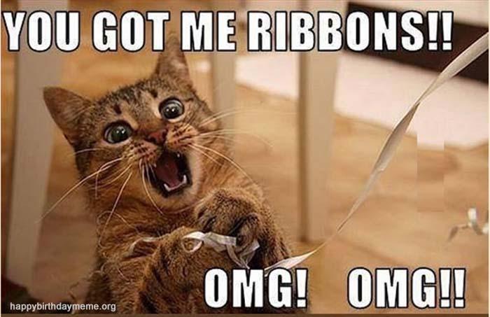 ribbons cat meme
