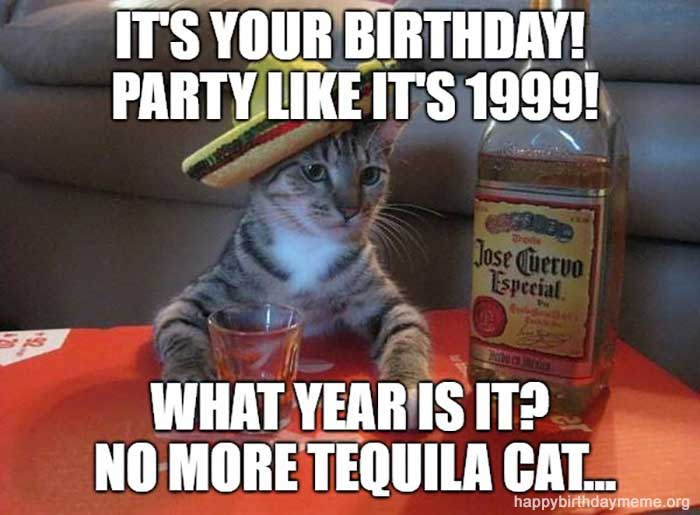 tequila cat meme birthday meme