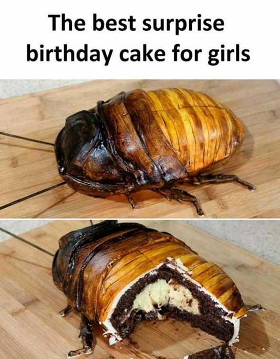 the-best-surprise-birthday-cake-for-girls roaches