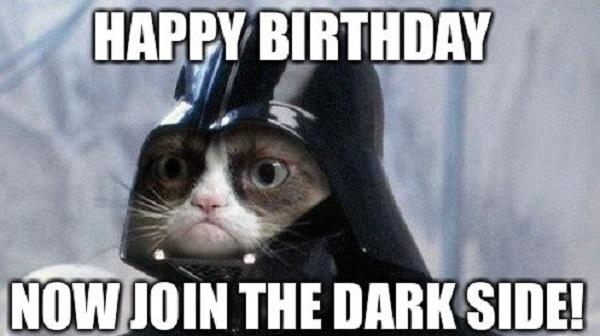 happy birthday cat meme for him