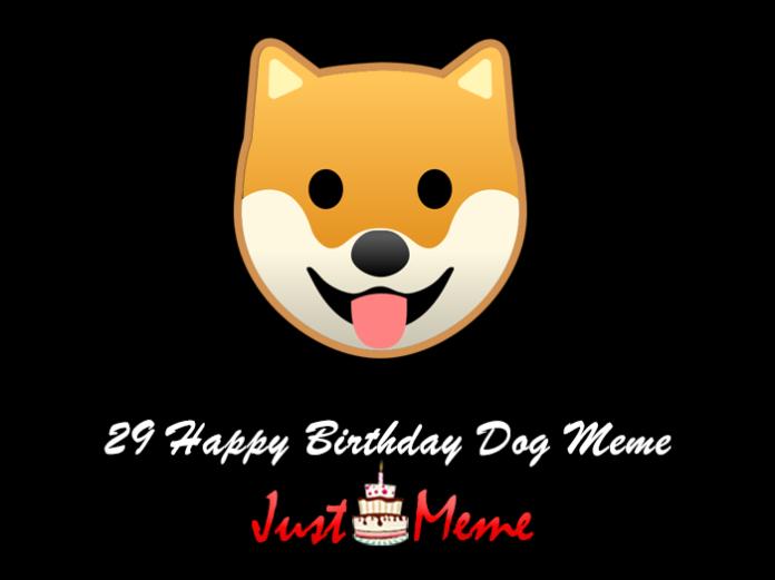 29 Happy Birthday Dog Meme