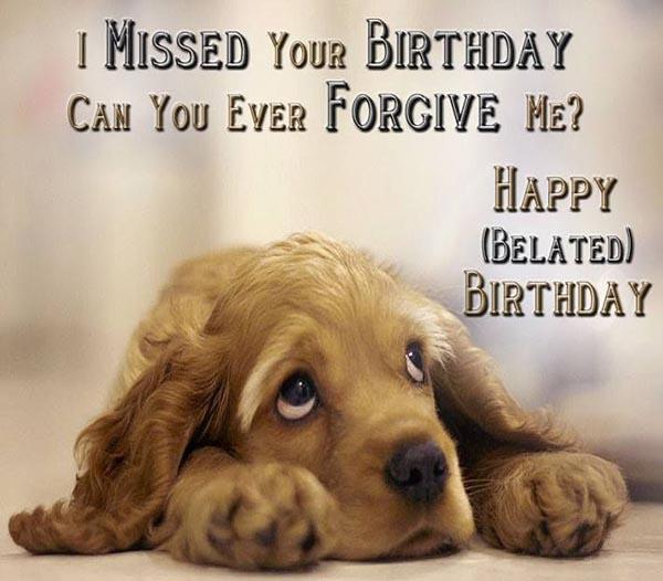 happy belated birthday dog meme