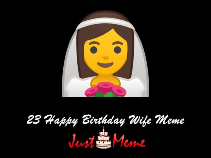 23 Happy Birthday Wife Meme