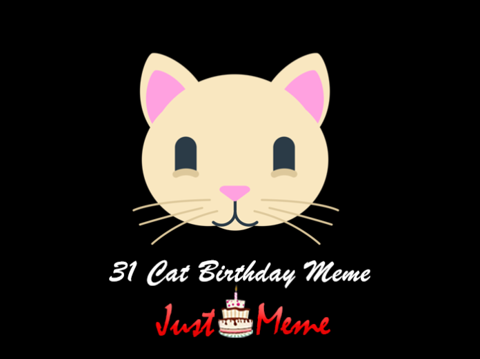 31 Cat Birthday Meme