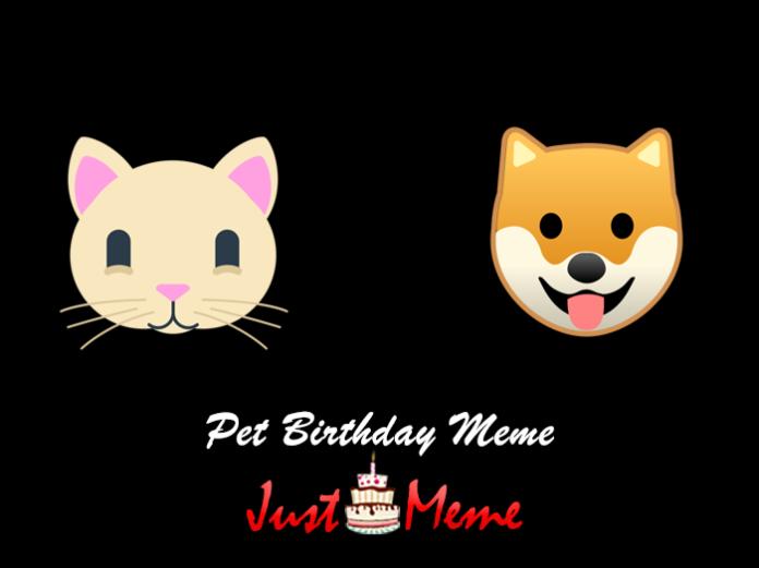 Pet Birthday Meme
