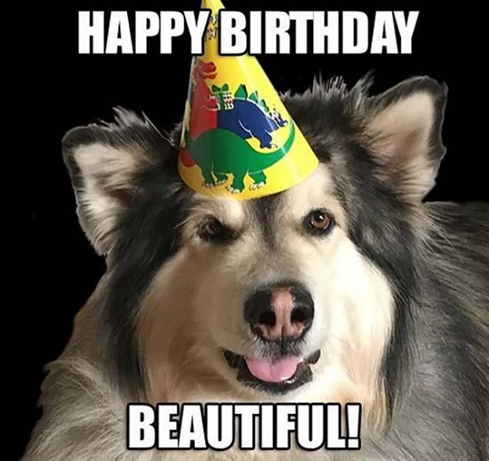 happy birthday dog meme for her