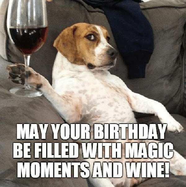 funny birthday wine meme