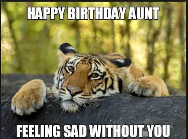 funny happy birthday aunt meme