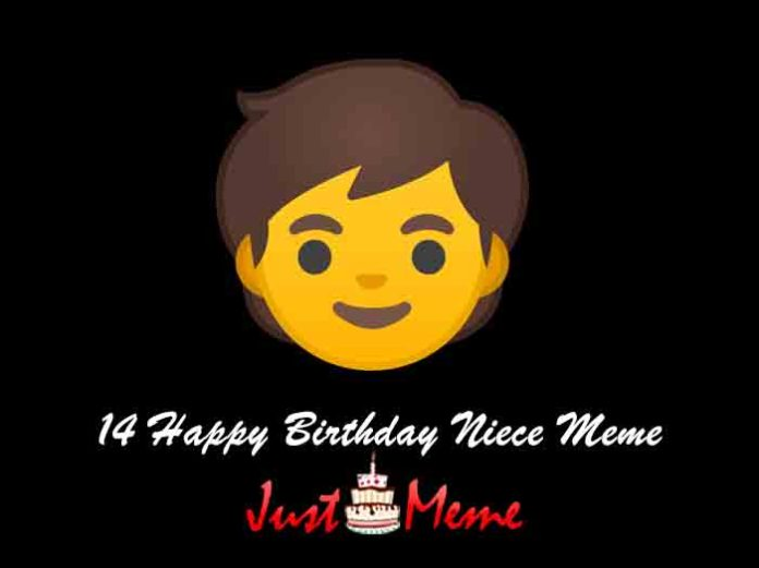14 Happy Birthday Niece Meme